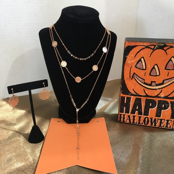 Charming Charlie Rose Gold necklace earring set